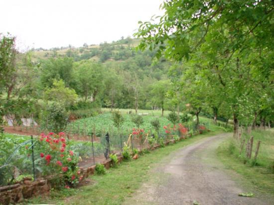 chemin coté jardin